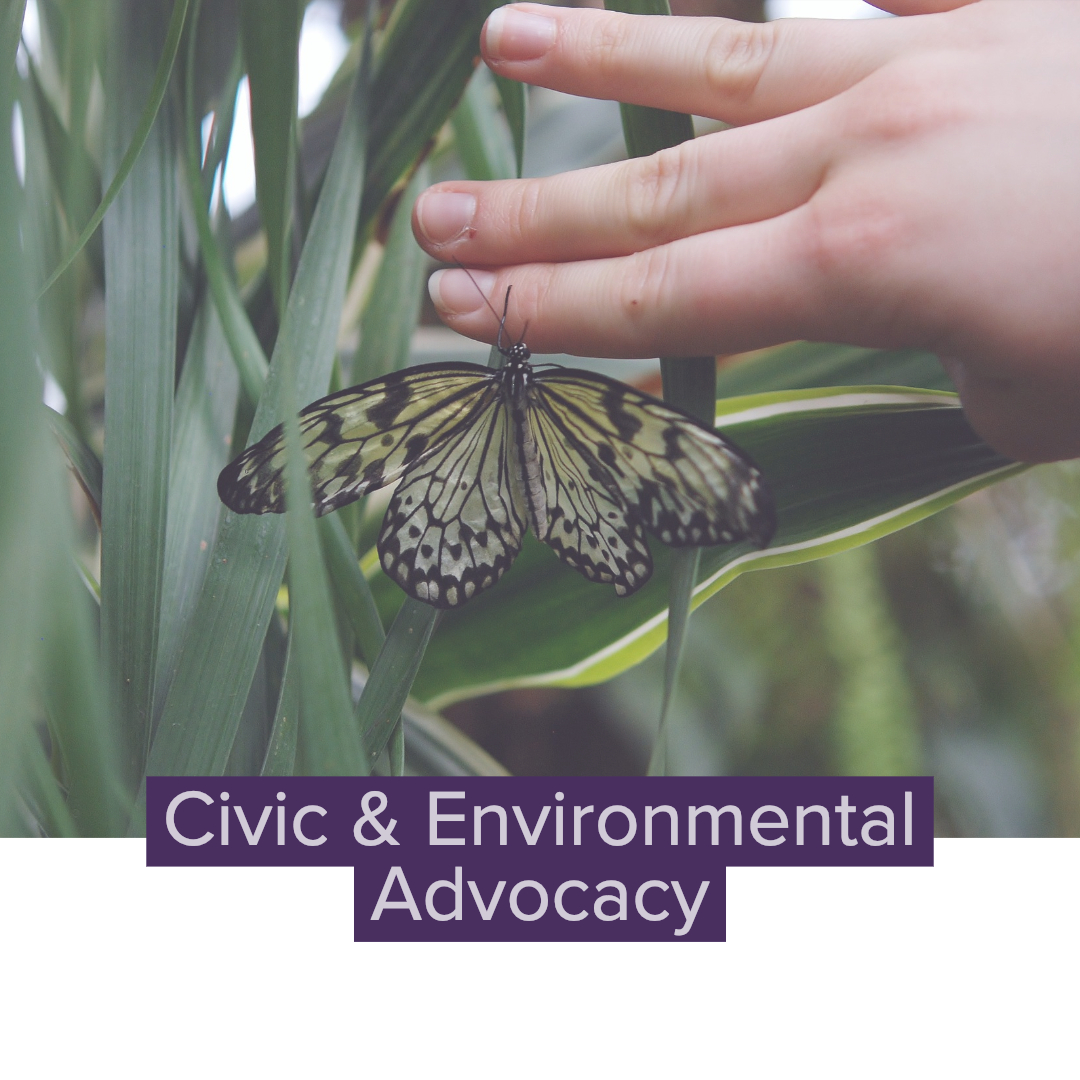 Civic & Environmental Advocacy