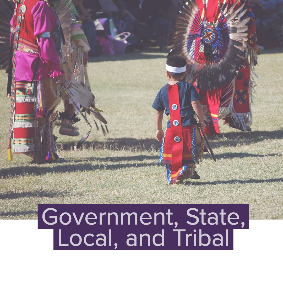 Government_ State, Local, and Tribal (1)