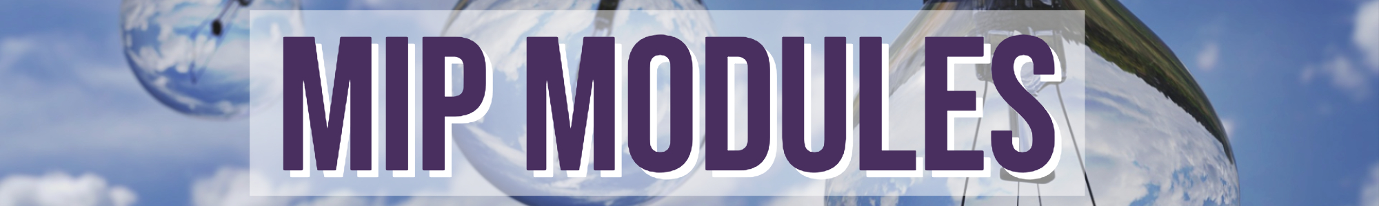 Mip Modules (1)