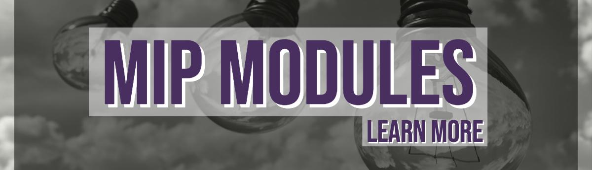 Mip Modules (3)